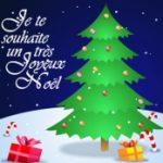 Que souhaitez-vous à Saint-Armand pour l'année 2011?