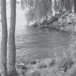 La baie Missisquoi se meurt