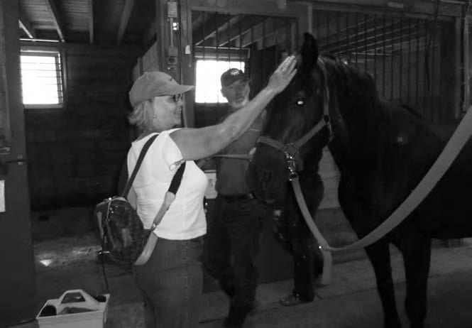 Mario Paquette présente sa monture à Diane Bilodeau (Photo par Richard-Pierre Piffartti)