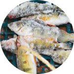 Pêche blanche
