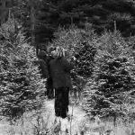 Les travailleurs forestiers