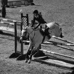 Bedford monte sur ses grands chevaux
