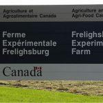 La ferme expérimentale de Frelighsburg