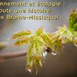 Environnement et écologie : toute une histoire dans Brome-Missisquoi