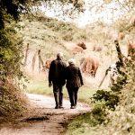 Les aînés à la rescoussepour la revitalisation